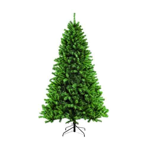 Christmas Trees - Our Products - Puleo International