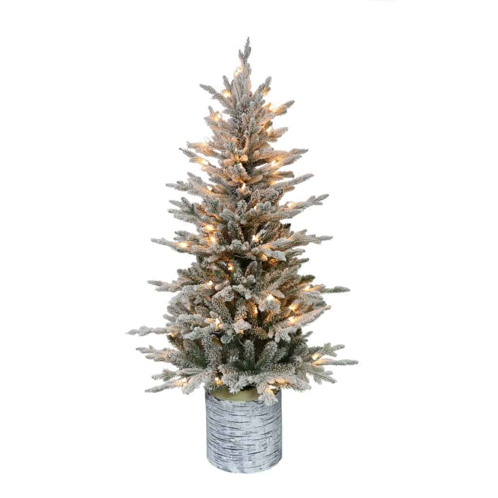Christmas Tree Pot: Potted Flocked Arctic Fir